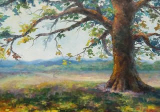 MY-OAK-TREE-40x30